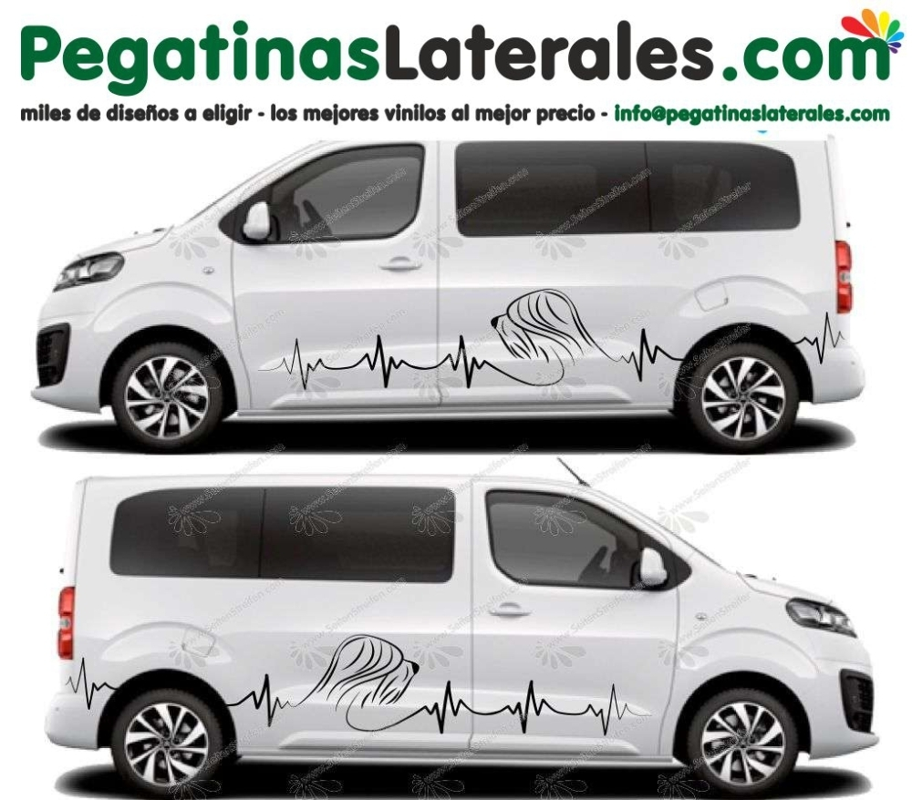 Peugeot Traveller- Expert- Perro Briard Collie- Set Pegatinas Laterales Adhesivo Sticker Set - U5024